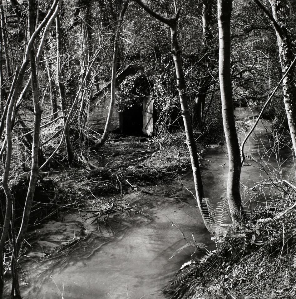 River Glyme,Lidstone